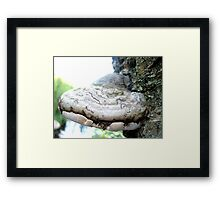 World of Trolls and Fairies II Framed Print