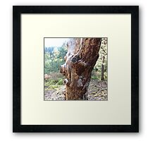 World of Trolls and Fairies VI Framed Print