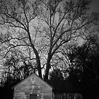 Old Abandoned House in Pinewood SC by AlixCollins