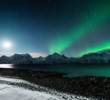 Nordlys at Moonset by Mieke Boynton