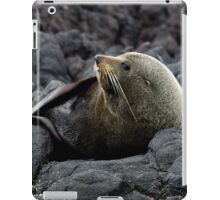 New Zealand Fur Seal iPad Case/Skin