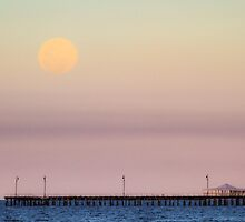 Rising Moon by Silken Photography