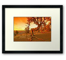 Grand Canyon Sunny Framed Print