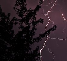 Lightning Storm, August 17, 2008. by David Chappell