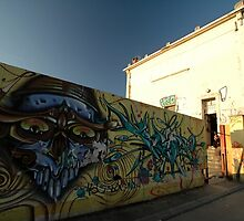 Grafitti - Chrome Face, Bordeaux, France, Europe 2012 by muz2142