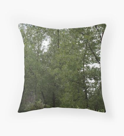 In the woods... But not really Throw Pillow