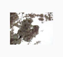 Cherry tree in springtime Unisex T-Shirt