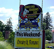 Welcome to the Pennsylvania Renaissance Faire by Judi Taylor