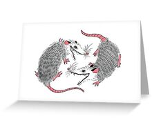 Double Possums Greeting Card