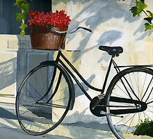 Bicycle with Red Flowers by Michelle Meyer