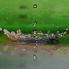 Opal and Emerald Crown by funkyfacestudio
