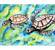 pair of sea turtles watercolor painting Photographic Print