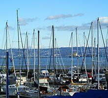 Sailboat Marina by Samantha Dean