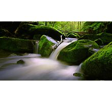 Erskine River, Great Otway National Park - Australia Photographic Print