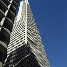 Building in San Francisco by Kristin Hamm