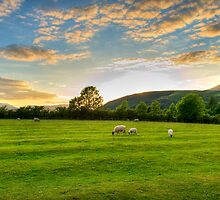 Castlerigg by Lea Valley Photographic