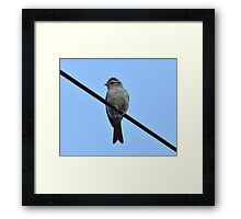 Pops To The Rescue! Framed Print