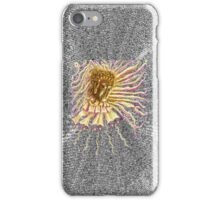 Radiant Buddha iPhone Case/Skin