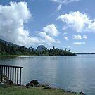 Tahiti Scenery #3 by Kristin Hamm