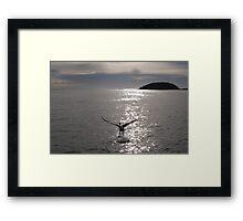 Take Off  #1 Framed Print