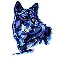 Blue Wolf Photographic Print