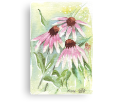 Daisies for healing Canvas Print