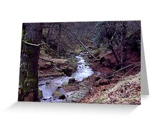 Blow Gill - Hawnby Moor Greeting Card