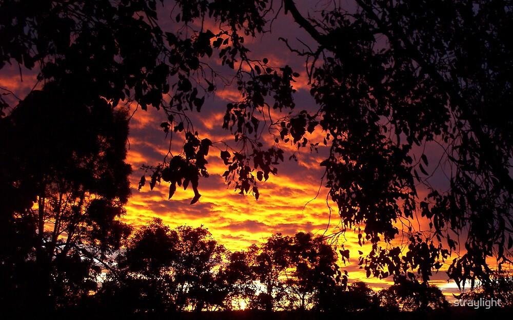 Eltham sunset by straylight