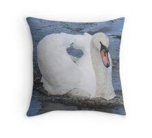A Busking Mute Swan Throw Pillow