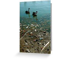 Swan Dive to Destruction. Is this Man's Nature ? Greeting Card