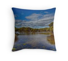 The Coorong Wetlands Throw Pillow