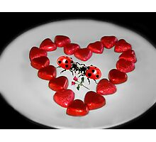 ♥VALENTINE HEARTS AND ROSES KISSING LADYBUGS...EVEN LADYBUGS FALL IN LOVE♥ Photographic Print