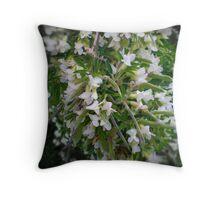Lucerne Tree - Spring, Australia 2010 Throw Pillow