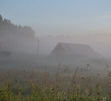 Old House in the Fog by Geoffrey