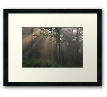 the rays Framed Print