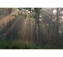 the rays Photographic Print