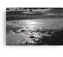 Back & White Beach Canvas Print