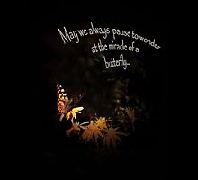 May We Always Pause to Wonder at the Miracle of a Butterfly by Corri Gryting Gutzman