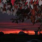 Bright Fall Sunset by sunsetgirl