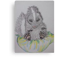 skunk weed bowl Canvas Print