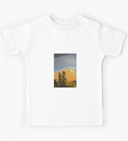 Tree Top Views, Grasmere, Lake District Kids Tee