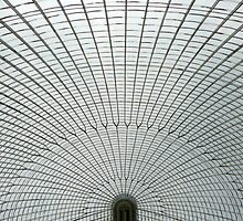 Bicton botanical gardens glass house by Kimberley  x ♥ Davitt
