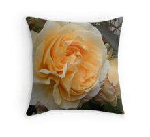 Orange and Peach double Rose. Throw Pillow