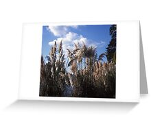 Fluffy Flags Greeting Card