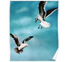 Two Seagulls Original oil painting  Poster