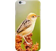 Golden Cisticola iPhone Case/Skin