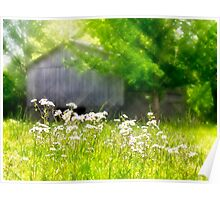 Wildflowers At the Barn Poster