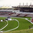 Goodwood  Racecourse by Malcolm Chant