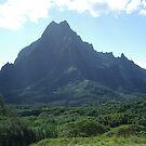 Tahiti Scenery #8 by Kristin Hamm