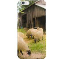 Little Sheep iPhone Case/Skin